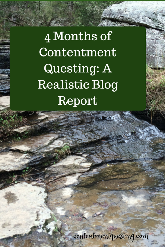4 months, blog, report, contentment questing
